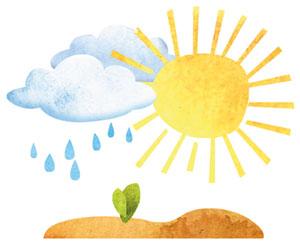 Umweltbildung - BNE für Grundschulen - Vier Elemente