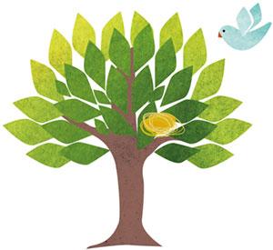 BNE für Grundschulen - Leben in und mit der Natur